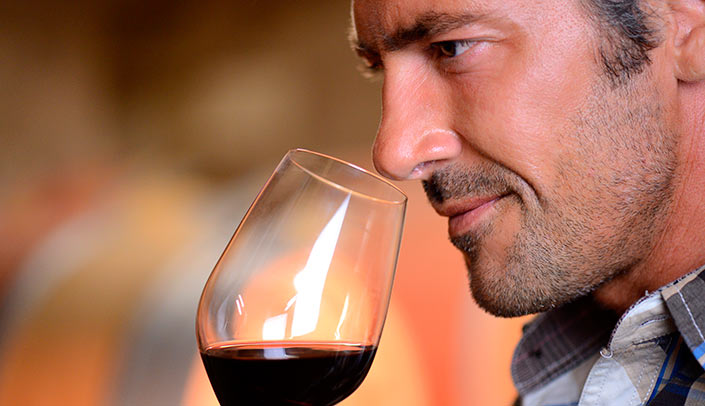 Tasting wine through olfactory phase